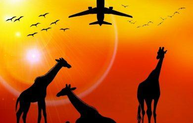 vacanza africa